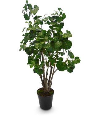Fleur ami BEGONIE Kunstpflanze, 160 cm