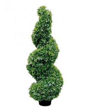 Fink-Living Online Shop Buchsbaum  ``Twist`` Spirale aus Kunststoff