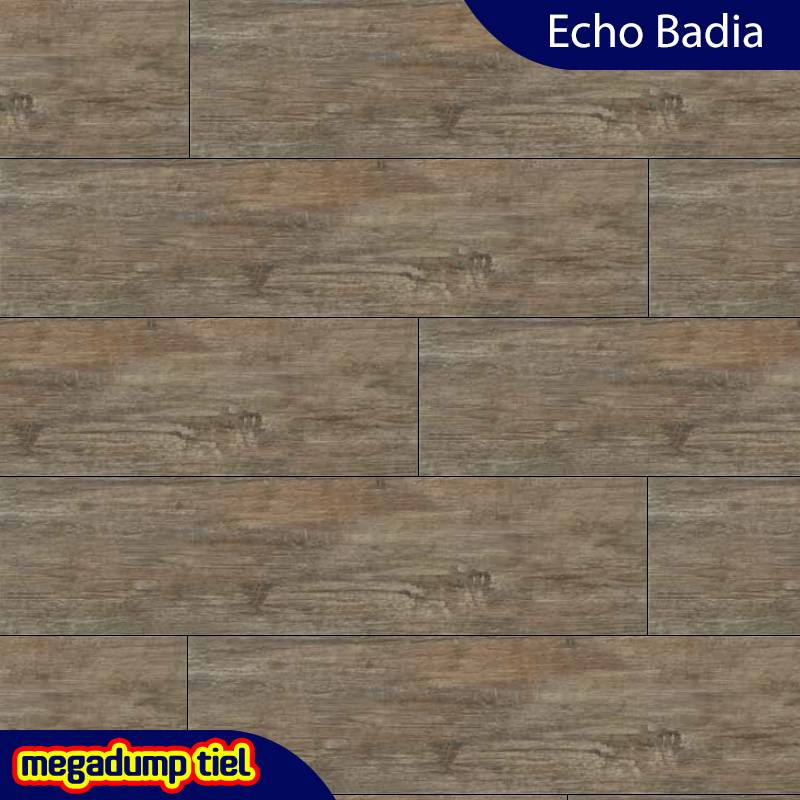 Houtlook Vloertegel Echo Badia 24,6X100 Cm P/M�