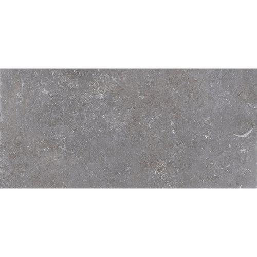 Vloertegel Cerriva Ancienne Petit Opus 20x20 20x30 cm Gris (prijs per m2)