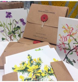 Kilcoe Studios Irish Wildflowers Greeting Card Pack