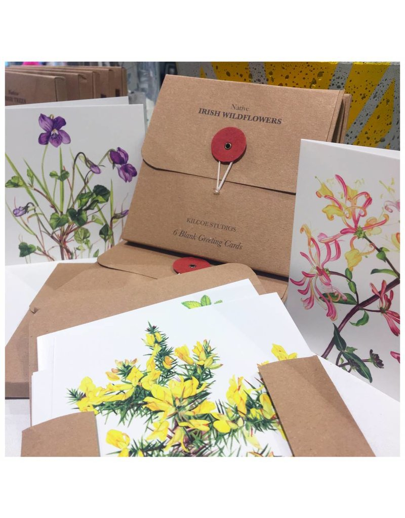 Kilcoe Studios 6 Pack of Greeting Cards- Irish Wildflowers