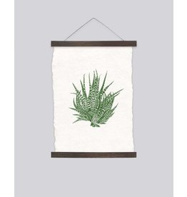 Martina Scott 'Aloe Vera' Limited Edition Print