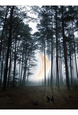 Marta Barcikowska Moon River Woods A3 Print