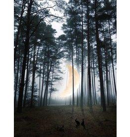 Marta Barcikowska Moon River - Woods & Crescent A3 Print