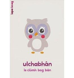 Ulchabhán - Owl A3 Print