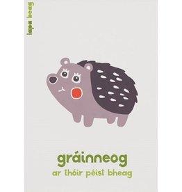 Gráinneog-Hedgehog  A3 Print