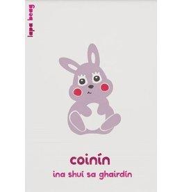 Coinín-Rabbit A3 Print