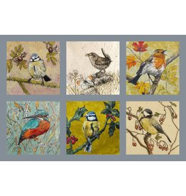 Annabel Langrish Set of Irish Garden Birds Illustrated Mini Cards - 12 pack