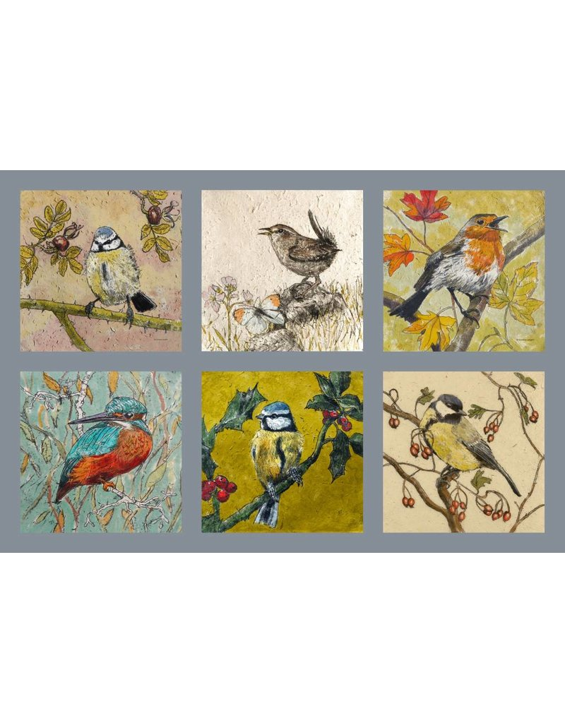 Annabel Langrish Set of Irish Garden Birds Illustrated Mini Cards - 12 pack