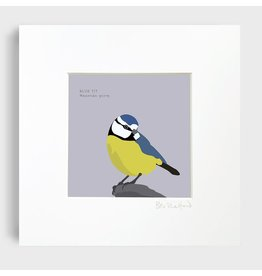Bex Shelford Mounted Blue Tit Print
