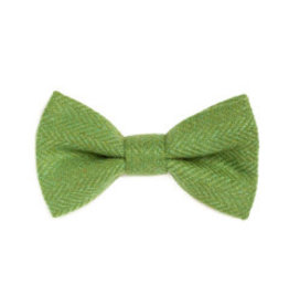 Orwell and Browne Donegal Tweed Bow Tie - Parakeet