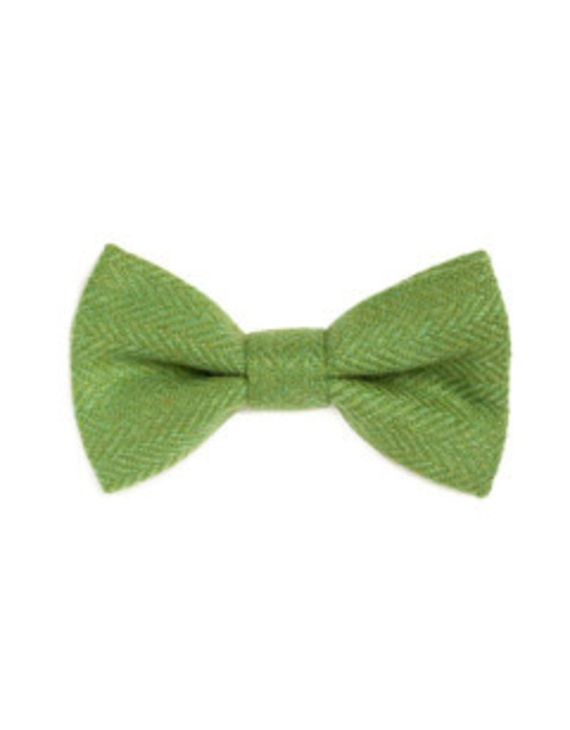 Orwell and Browne Donegal Tweed Bow Tie - Parakeet