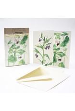 Kilcoe Studios Irish Edible Garden Greeting Cards