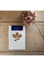 Maggie Marley Copper Horse Chestnut Leaf Botanical A5 Print