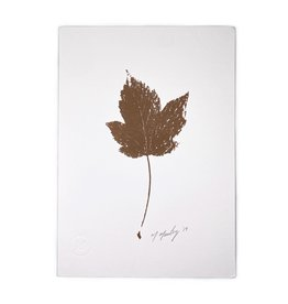 Maggie Marley Copper Sycamore Leaf Botanical A5 Print