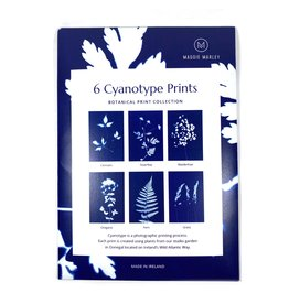 Maggie Marley Cyanotype Botanical A5 Prints Set 6 Pack