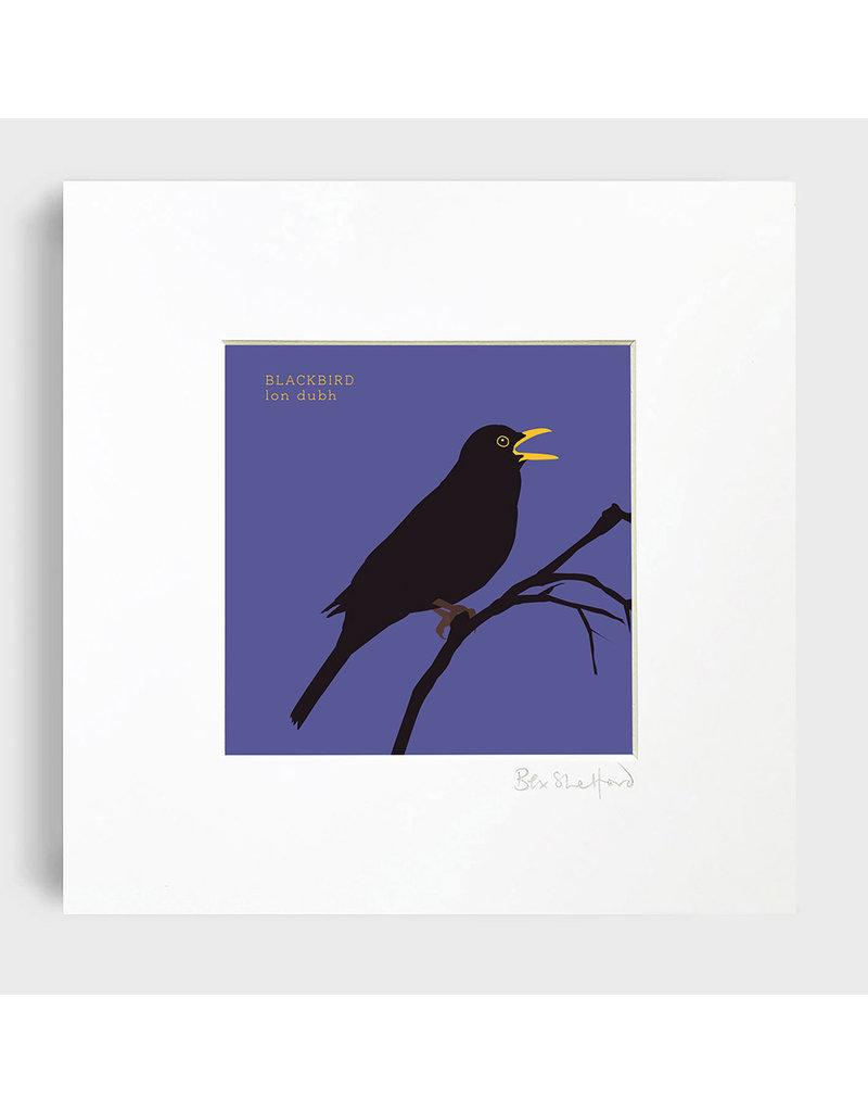 Bex Shelford Mounted Blackbird Print