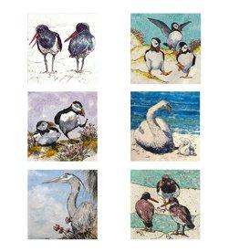 Annabel Langrish Set of Irish Sea Birds Illustrated Mini Cards - 12 pack