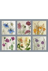 Annabel Langrish Set Of Irish Wild Flowers Illustrated Mini Cards - 6 pack