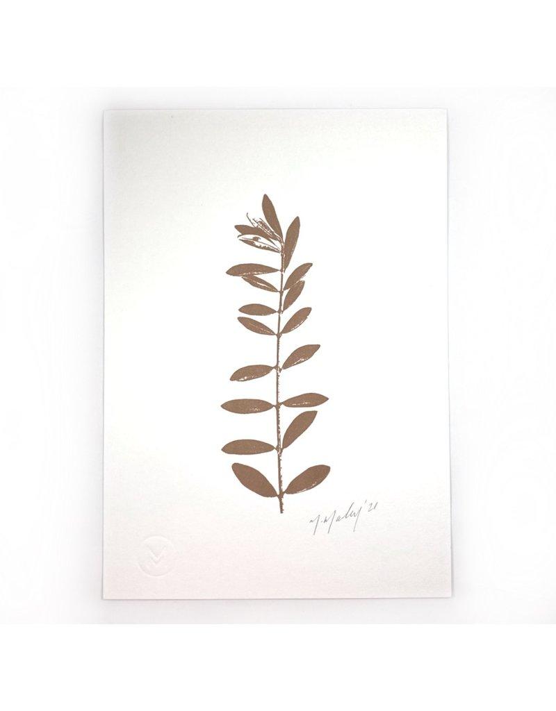 Maggie Marley Copper Olive Leaf Botanical A5 Print