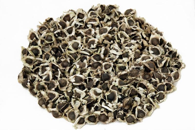 Moringa zaden ongepeld 50g