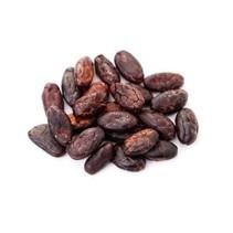 Rå kakao bønner bio