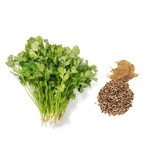 Nutrikraft Bio Korianderpulver