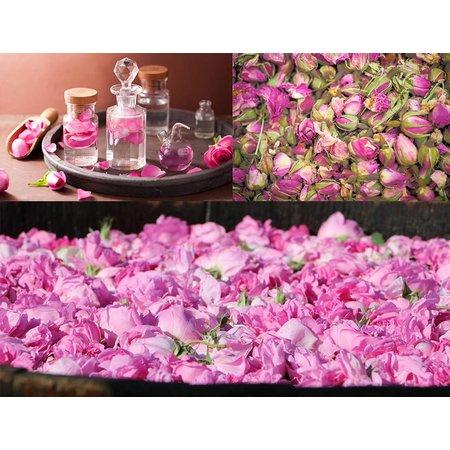 Alassala Tonic Marokkaans rozenwater 125 ml