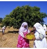 Alassala Moroccan arganolie 250ml