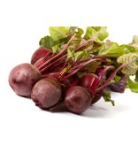 Nutrikraft pulver Bio rødbeder