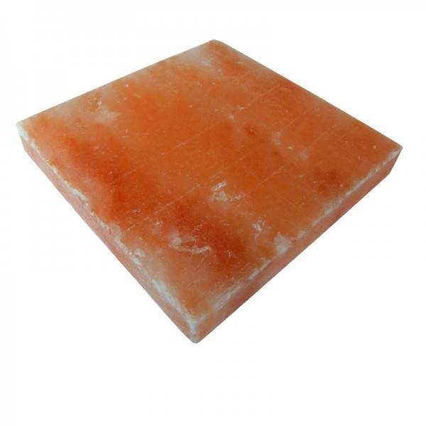 Zoutsteen Himalayazout zouttegel 20x10x5 glad