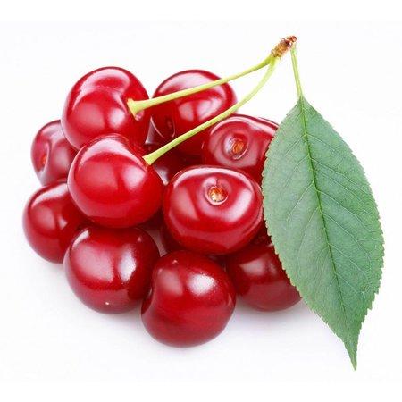 Nutrikraft Bio Acerola Pulver
