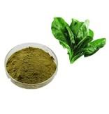 Nutrikraft Organisk Spinach Powder