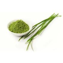 gerstegras barleygrass poeder - 100 gram