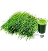 Nutrikraft Bio Tarwegraspoeder uit Nieuw Zeeland 125 gram