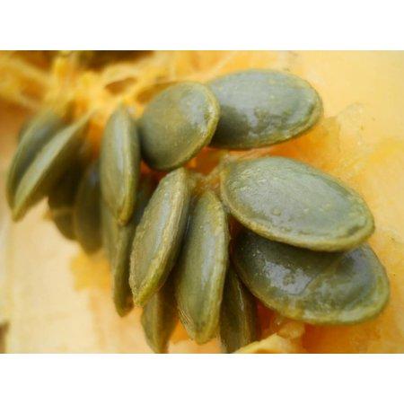 Nutrikraft græskarkerner skinne hud aa meget - 100 g