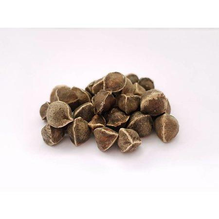 Nutrikraft Moringa frø flåede - 50 gram