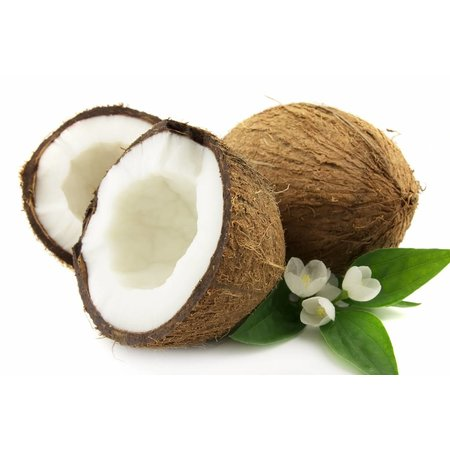 HolyFlavours Økologisk kokos mel