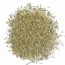 Organic Rosemary herbs