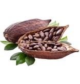 Nutrikraft Biologische Cacao poeder raw 100g