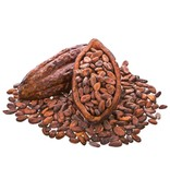 HolyFlavours Biologische Cacao boter raw 100g