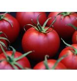 Nutrikraft Organisk Tomato Powder