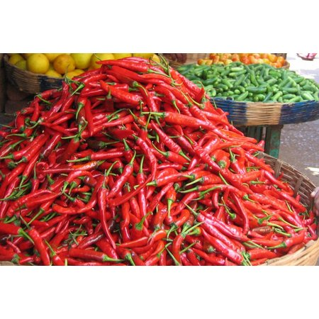 Nutrikraft Biologisk Chile knust hot chili 13.000 SCU