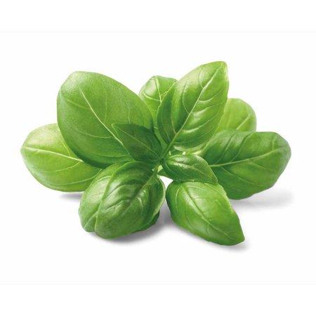 Nutrikraft Basil urter på organisk vis