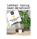Bag-to-Nature self grøntsagsdyrkning gaveæske - en kasse 4 varianter
