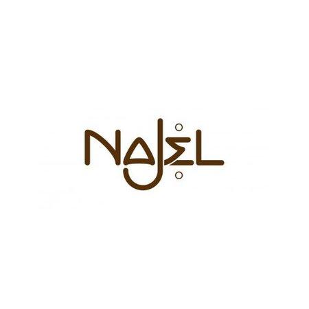 Najel Aleppo Shampoo vet haar 500 ml