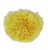 Najel natuurlijke spons 9-10 cm