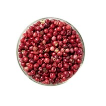 Schinus pink peber bær