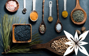 Urter og krydderier